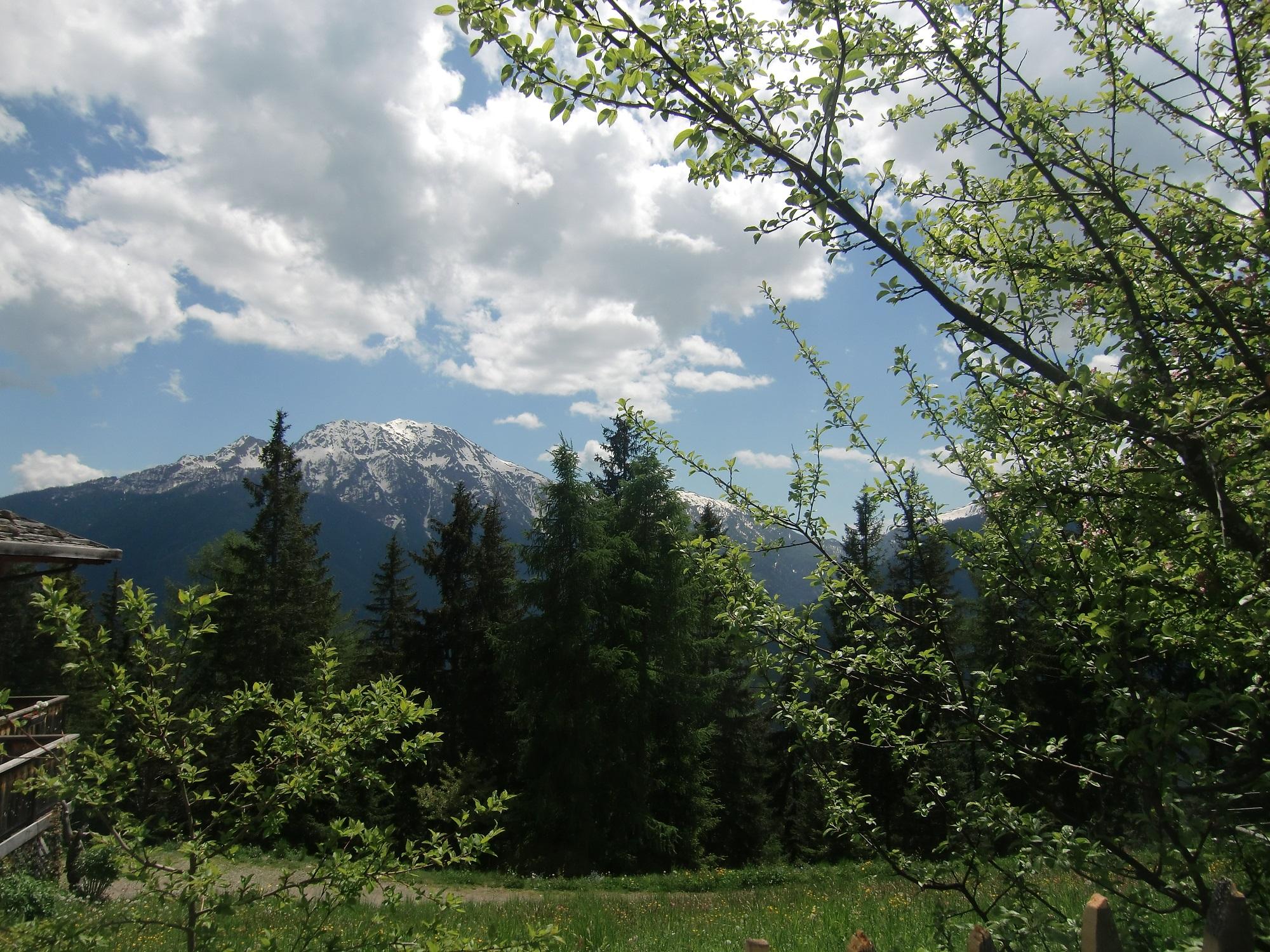 Blick aufs Tal 2